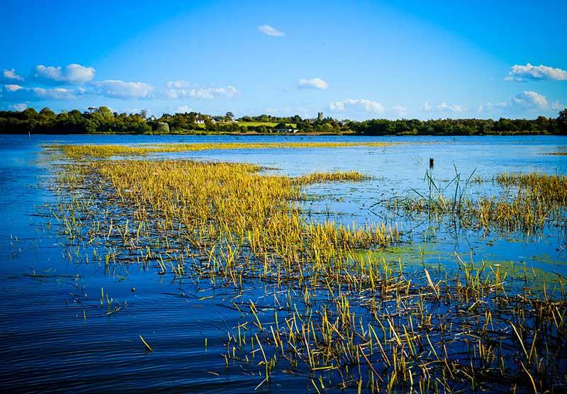 LOUGH NEAGH HOSTS INTERNATIONAL WATER QUALITY SEMINAR